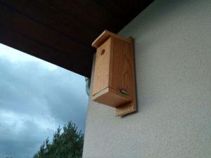 budka dla ptaków zamocowana na kołki do styropianu